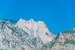 Gråa berg som prickas med träd över en blå himmel royaltyfri fotografi