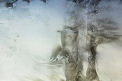 Gråa bioniska och naturmodeller vid målarfärgfläckar på papper - marbl Royaltyfria Bilder