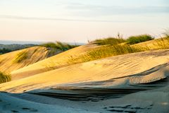 Gråa dyn i Litauen Nida arkivfoton