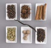 gråa isolerade set kryddor Arkivfoton