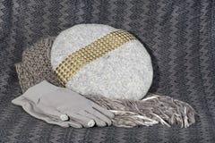 Gråa kvinnliga halsduk, basker och handskar Arkivbild