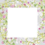 Gråa ramvattenfärgblommor av rosa växt av släktet Trifolium och gul vicker r royaltyfri foto