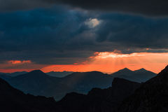 Grånar och det Torreys maximumet på solnedgången Arkivfoton