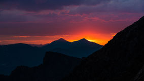 Grånar och det Torreys maximumet på solnedgången Arkivbild