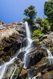 Gråsprängda nedgångar sequoianationalskog, Kalifornien, USA Fotografering för Bildbyråer