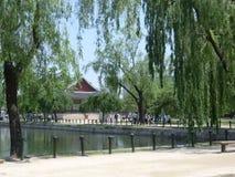 Gråta Willow Trees By en sjö i Seoul Fotografering för Bildbyråer