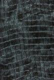 grått Arkivbilder