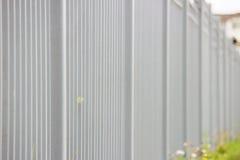 grått metallstaket i längden som en bakgrund och ett gräsplanblad Royaltyfria Bilder