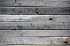 grått trä Royaltyfria Bilder