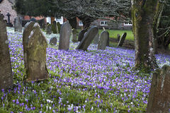 Grób, krzyże i kamienie przy starym gothic cmentarzem w Anglia Obraz Royalty Free
