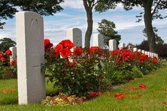 grób róże Obraz Stock