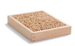 Grões de aveia na caixa de madeira no branco Fotografia de Stock Royalty Free