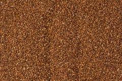 Grões de Brown Teff imagens de stock