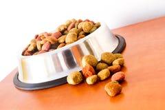 Grões do alimento para cães de Coulourfull Imagem de Stock