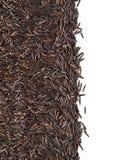 Grões do arroz imagem de stock royalty free
