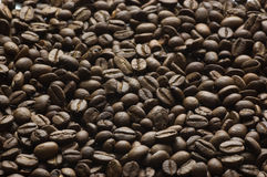 Grões do café Foto de Stock