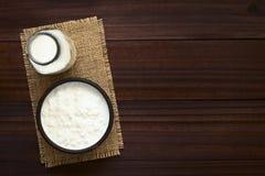Grões do kefir no leite fotos de stock