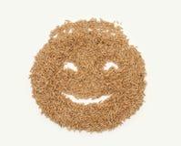 Grões do sorriso da aveia Imagens de Stock Royalty Free
