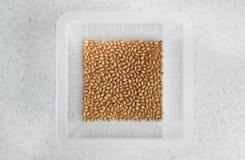 Grões do trigo em uma bacia quadrada na tabela Fotos de Stock