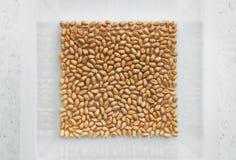Grões do trigo em uma bacia quadrada na tabela Fotos de Stock Royalty Free