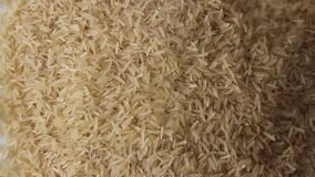 Grões lisas crus do arroz video estoque