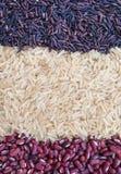 Grões sem glúten do fundo do arroz Imagem de Stock Royalty Free