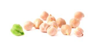 Grões verdes e maduras do grão-de-bico Fotografia de Stock