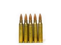 Größen 5 56 Millimeter-Gewehrkugel Stockfoto