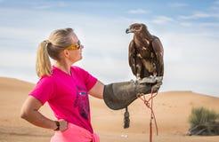 Größerer beschmutzter Adler Stockfoto