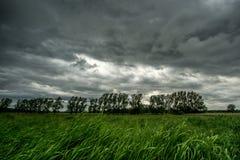 Grön äng med mörka moln Royaltyfria Bilder