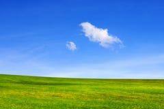 Grön äng under blå himmel med moln arkivfoto
