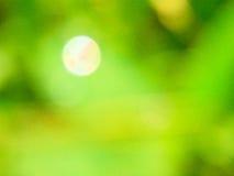 Grön abstracktbakgrund Royaltyfri Bild
