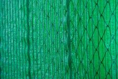 Grön abstrakt bakgrund med utrymme för text Arkivfoto