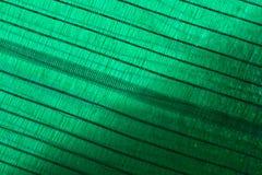 Grön abstrakt bakgrund med utrymme för text Royaltyfria Foton