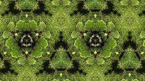 Grön abstrakt makromodell royaltyfri illustrationer
