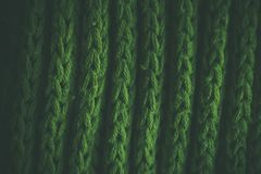 Grön abstrakt textur och bakgrund Gräsplan stucken textur och bakgrund för formgivare Makrosikt av stack fibrer Royaltyfri Foto