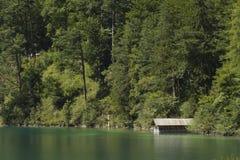 Grön Alpsee sjö med roddskjulet och träd, Tyskland Fotografering för Bildbyråer
