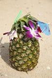 Grön ananascoctail på stranden Fotografering för Bildbyråer