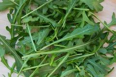 Grön arugula lämnar på träskärbräda Ny rucola i köket i det plast- magasinet, italiensk smaktillsats Sund livsstil royaltyfri bild