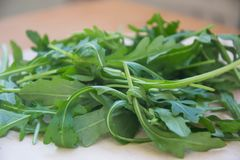 Grön arugula lämnar på träskärbräda Ny rucola i köket i det plast- magasinet, italiensk smaktillsats Sund livsstil royaltyfri fotografi
