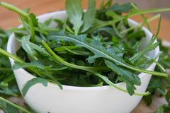 Grön arugula lämnar på träskärbräda Ny rucola i köket i porslinbunken, italiensk smaktillsats Sund livsstil royaltyfri fotografi