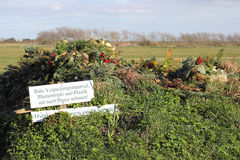 Grön avfalls på en bykyrkogård i den norr Tyskland Arkivfoton