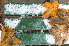 Grön bänk med snö- och höstblad Royaltyfria Foton