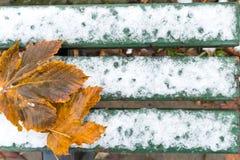 Grön bänk med snö- och höstblad Arkivbild