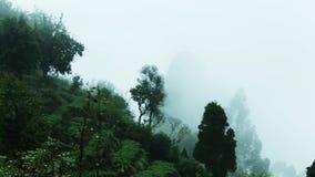 Grön backe med träd i molnrester Mist som rusar över bergkant Panorera skottet arkivfilmer