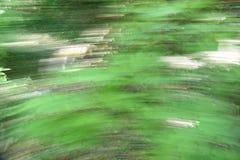 Grön backroundtextur royaltyfria foton