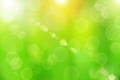 Grön bakgrund Royaltyfria Foton