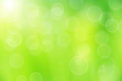 Grön bakgrund Arkivfoto