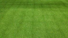Grön bakgrund för fotbollfält för att spela fotboll Royaltyfri Bild