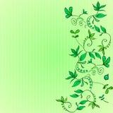 Grön bakgrund i en smal remsa På den blom- prydnaden för rätsida - gröna klättringväxter, blommor, sidor Arkivbilder